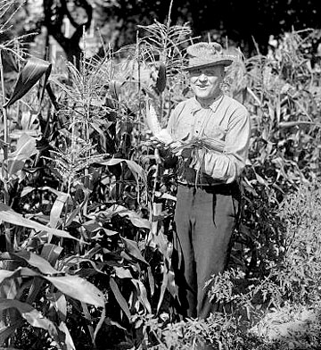 LOCmurray-farmer